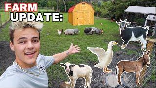 My BackYard MINI FARM!! updates