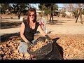 How to Prepare your Soil NOW for Spring - 5 Easy Steps