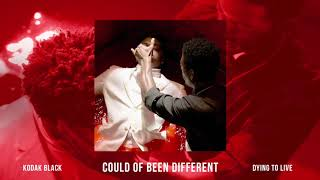 Kodak Black - Could Of Been Different [Official Audio]