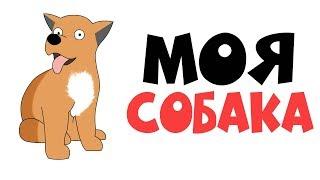 Моя Собака | Анимация