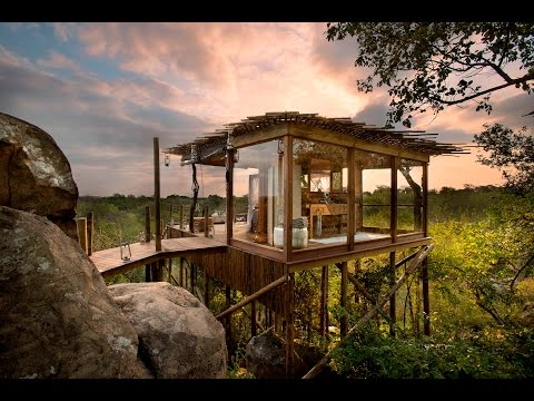 Big Five Safari at River Lodge Lion Sands (South Africa): re