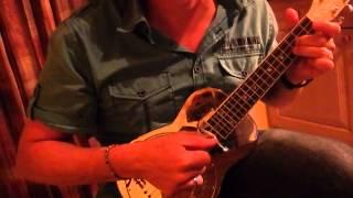 Beale Street Blues Ukulele resonator