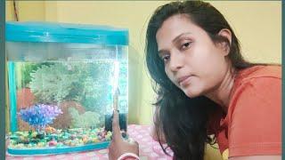 Feeling very sad | Bohut bura lag raha hai | Odisha's Authentic prasad 🙏 Ss vlogs
