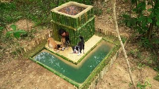 Rescues Dog Lost Mum Build Bamboo House Mini Pool & Fish Pond