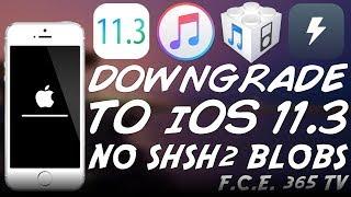 Shsh2 Blobs Downgrade