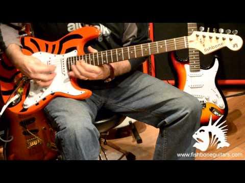 Fishbone Guitars strat demo