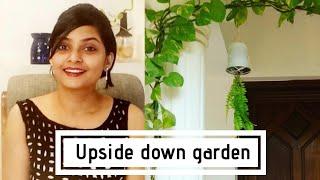 തല കീഴായി ചെടി നടാം/Inverted garden/upside down garden/DIY/less space garden/indoor garden മലയാളം