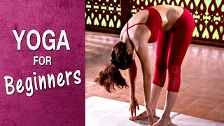 Yoga for flat tummy - Padahastasana (English) - Shilpa Yoga