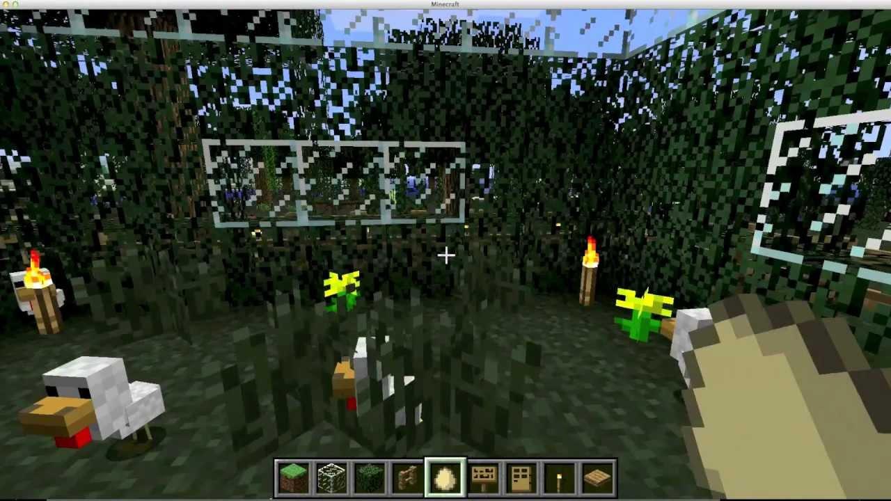Minecraft astuces elevage de poules youtube - Poule minecraft ...