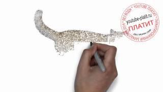Нарисованные карандашом коты  Как нарисовать любопытную кошку