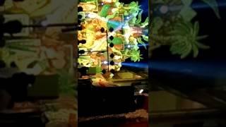 vijay vihar jagran Video