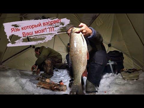 Рыбалка! Язь который