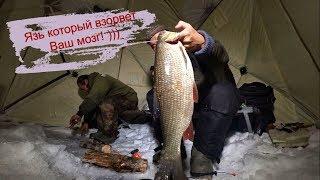 Рыбалка! Язь который взорвет Ваш мозг! Якутия Yakutia