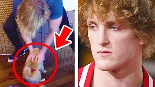 5 Times Logan Paul Lost Thousands of Fans In Seconds thumbnail