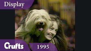 Essex Dog Display Team perform at Crufts 1995   Crufts Classics thumbnail