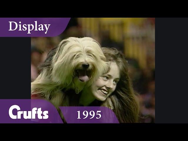 Essex Dog Display Team perform at Crufts 1995 | Crufts Classics