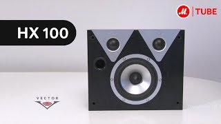 Полочные колонки Vector HX100(Подробнее на http://www.mvideo.ru/products/polochnye-kolonki-vector-hx100.html?reff=youtube_Vector_HX100 Тыловые каналы Vector HX отвечают за ..., 2014-01-27T08:40:15.000Z)