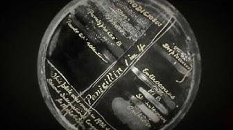 Quarks - Erfindung des Penicillin