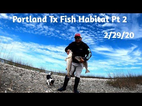 Portland TX Fish Habitat Pt 2