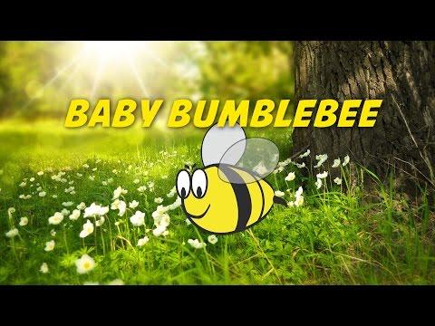 Baby Bumblebee | Nursery Rhymes Karaoke - Simple Lyrics version
