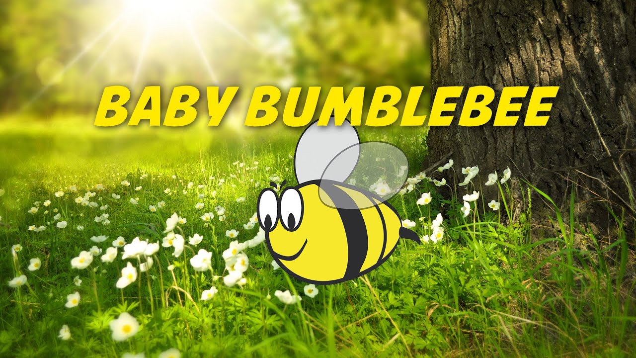 Baby Bumblebee Nursery Rhymes Karaoke Simple Lyrics