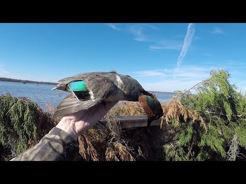 Louisiana Duck Hunting Struggle 2018 - Where Are The Ducks?!?!