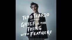 Teho Teardo - I'm Covered