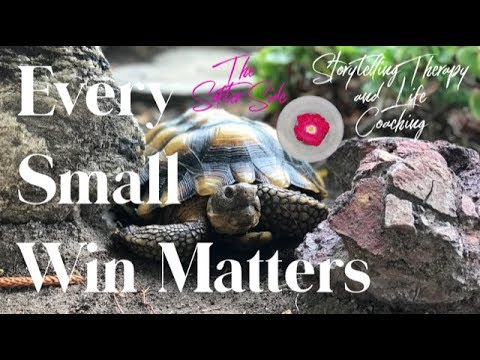every-small-win-matters-|-caring-for-turtles-|-storytelling-therapy