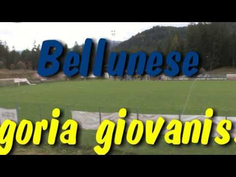 Cortina vs  Alpago    categoria giovanissimi il 22 10 2016