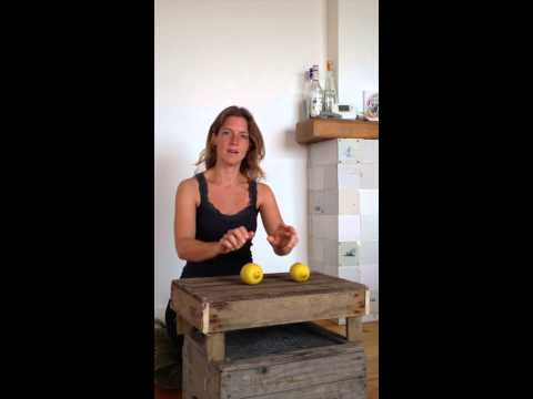 De Citrussong instructievideo