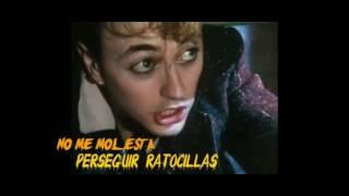 Stray Cats - Stray Cat Strut  (Gato Callejero) - Subtítulos Español - HD