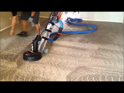 Carpet Shampoo Service