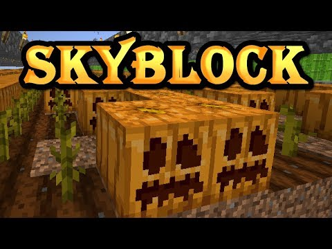 Hypixel SkyBlock [22] MASSIVE Pumpkin Farm