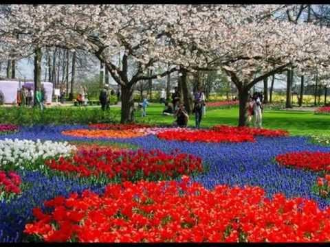 Parcs et jardins du monde wmv youtube Modele de rocaille pour jardin