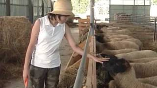 しずお農場の紹介ムービーです。