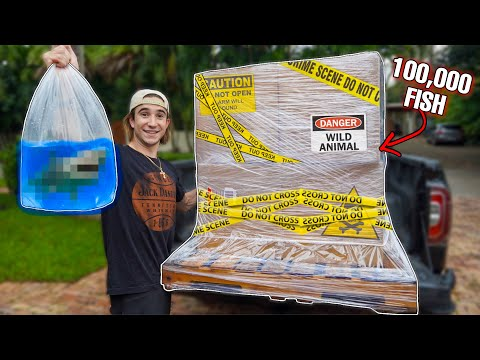 ORDERING 100,000 LIVE FISH PALLET OFF THE WEB...