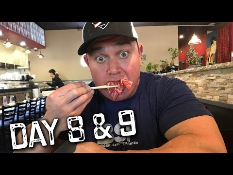 Keto Diet With Mark Bell Day 8 & 9   Lose 10 pounds In 14 Days