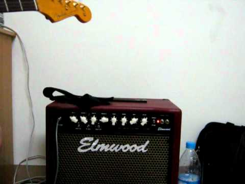 Elmwood Stinger 30 test