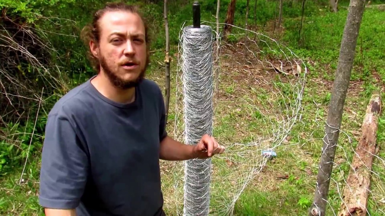 DIY low cost chicken wire fence with home made fence posts for ...