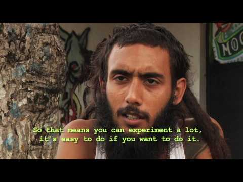 Havana Bombings - a documentary short