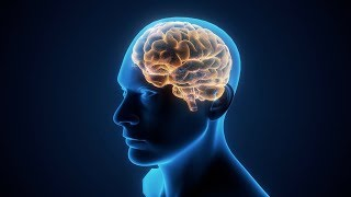 Untangling the Brain Circuits in Mental Illness