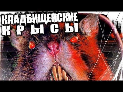 Страшные Истории На Ночь - Кладбищенские Крысы