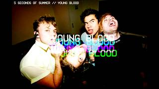 5 Seconds of Summer - Young Blood (LYRICS)