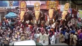 Puthuppally keshavan.sadhu.pallatte brahmadathan. meenad vinayakan@ anayadi gajamela 2017..
