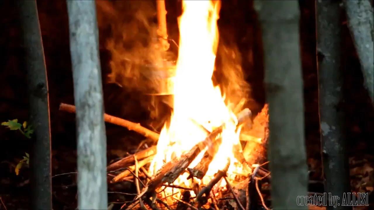 BUSHCRAFT   ALLISI Music Video