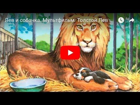 Мультфильм лев и собака