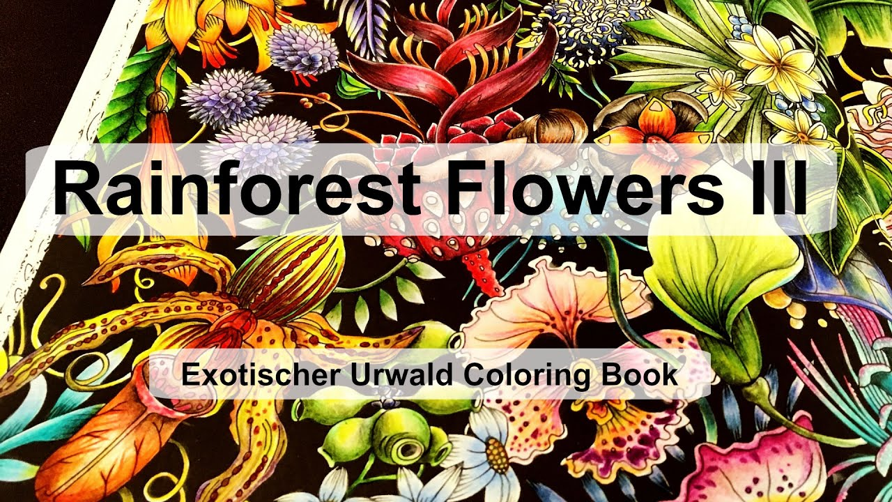 Youtube coloring book - Rainforest Flowers Iii Adult Coloring Book Exotischer Urwald Exotic Jungle Youtube