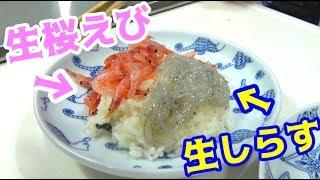 生桜えびと生しらすで贅沢丼を作って食べる! thumbnail