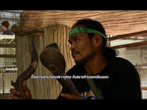 ทีวีบูรพา กระบี่มือหนึ่ง : ปรมาจารย์จับงูเห่า (5 ม.ค 57)