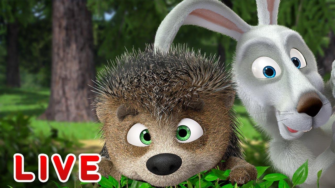 🔴 LIVE! Masha e Orso 🐻👱♀️ La foresta sta chiamando 🌳🌲🗯 Masha and the Bear 💥 Cartoni animati